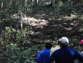 Ecología funcional de bosques tropicales