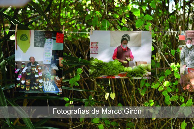 Forografías de Marco Girón
