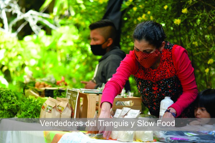 Vendedoras del Tianguis y solw food