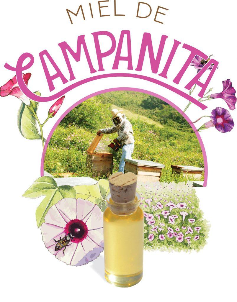 Miel de Campanita
